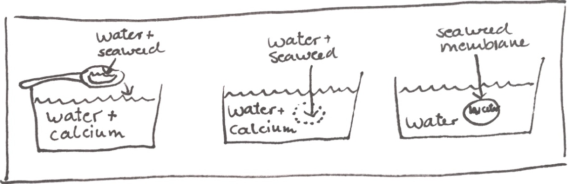 Seaweed pouches mad out of seaweed, calcium and water